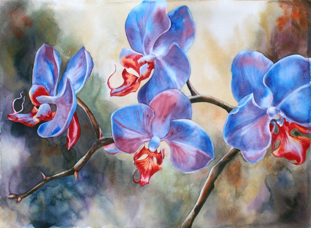 Mistique Orchids