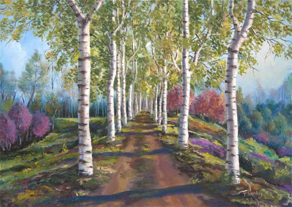 Birch Alley. Spring