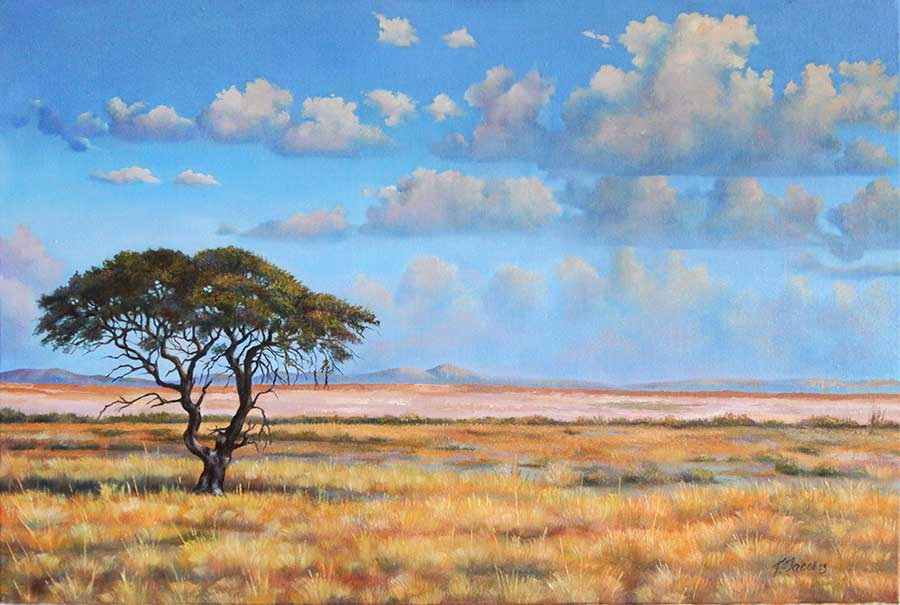 Namibian desert with lonely tree