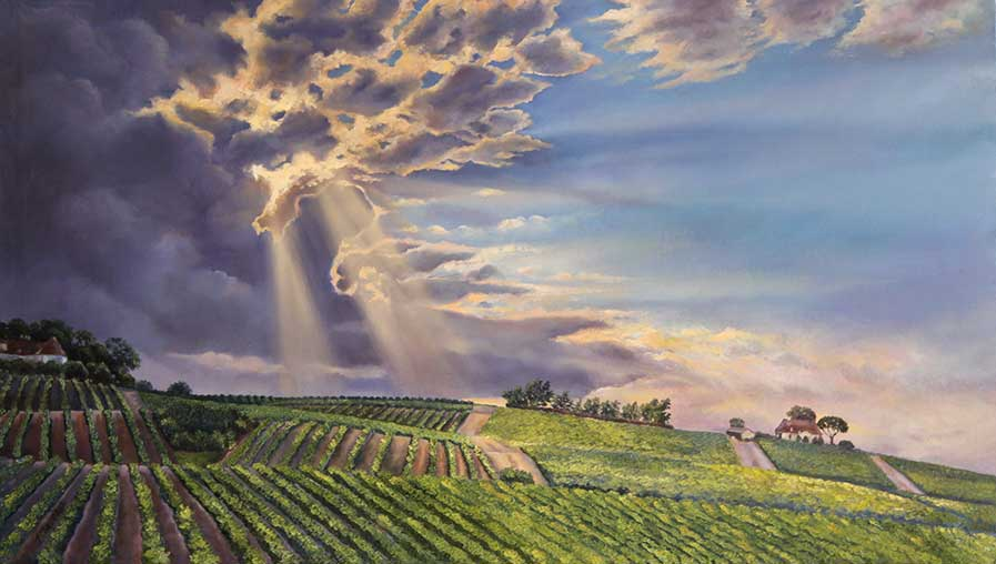 Winelands Sunset