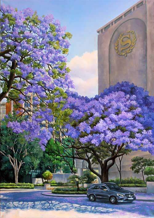 Jacaranda at Sheraton Hotel. Pretoria